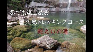 冬でも楽しめる屋久島のトレッキングコース・蛇之口の滝