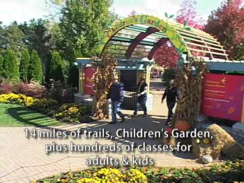 What's there to see and do in Oakbrook Terrace, Illinois?