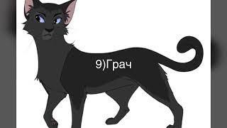 Мои любимые герои книги Коты воители