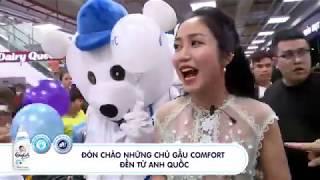 Đội quân Gấu Dịu Hương,Gấu Comfort  Comfort Vietnam MASCOT TRƯỜNG NAM 0978 550 644
