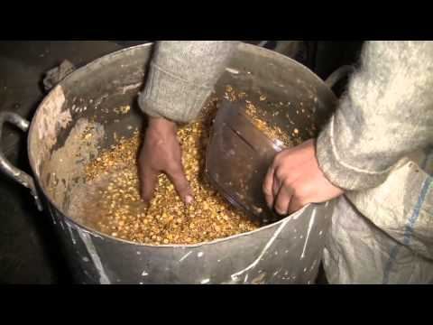 Как готовить и употреблять в пищу проросшую пшеницу?