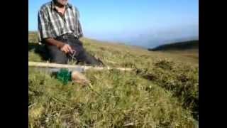 Окончание сенокоса в Южном Дагестане