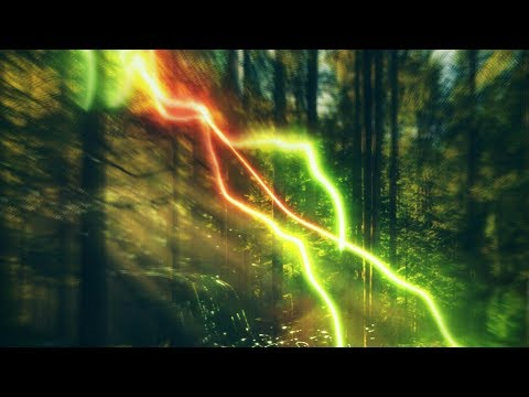 kostyak. — Energy Forest (Official Audio)