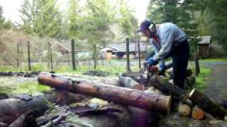 Cutting Firewood For A Neighbor #4