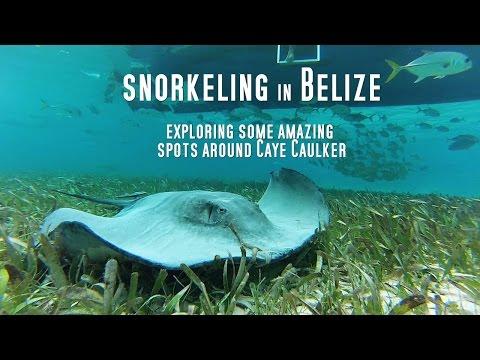 Snorkeling Belize Gopro