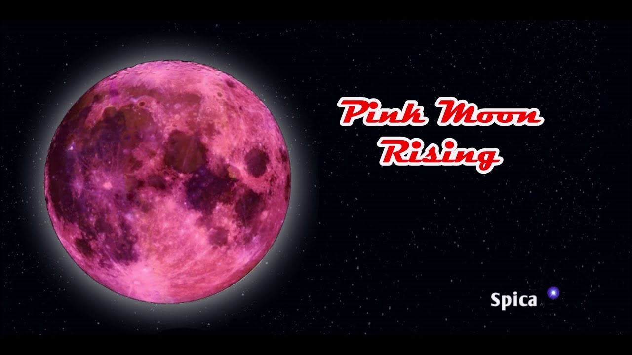 Pink Moon: April 2019 Full Moon rises TOMORROW - But will it turn pink?
