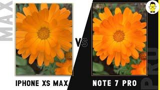 Redmi Note 7 Pro vs iPhone XS Max camera comparison: was Xiaomi telling the truth?