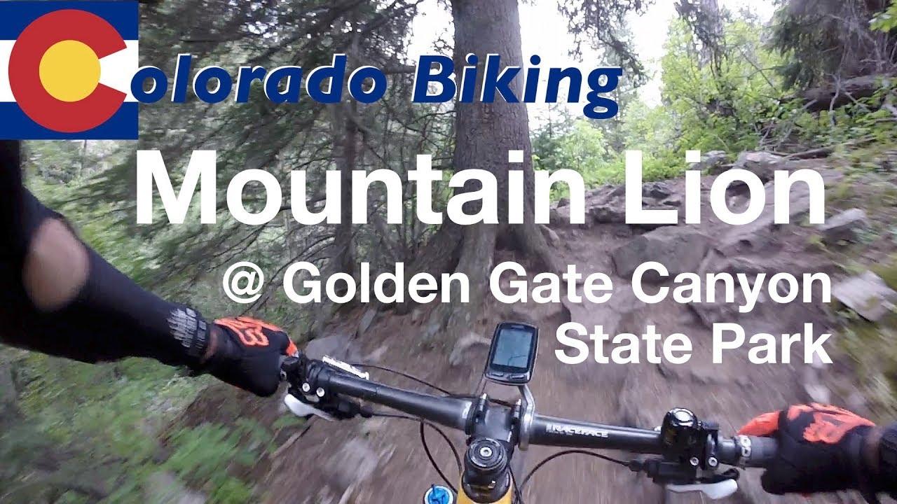 Mountain Lion Mountain Biking At Golden Gate Canyon State Park