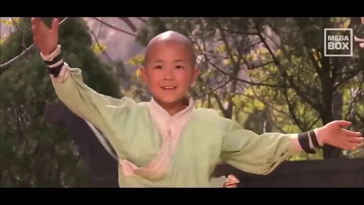 Download SHAOLIN  KUNG FU  KIDS