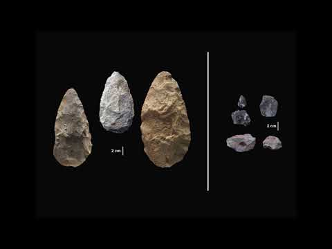 Stone Tools From Kenya Gives Glimpse Into Early Human Behavior