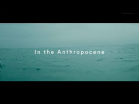 Nick Mulvey  - In the Anthropocene