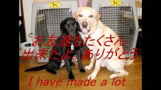 「犬の十戒」は有名ですがこんなのもあっても良いんじゃないかなぁ・・・