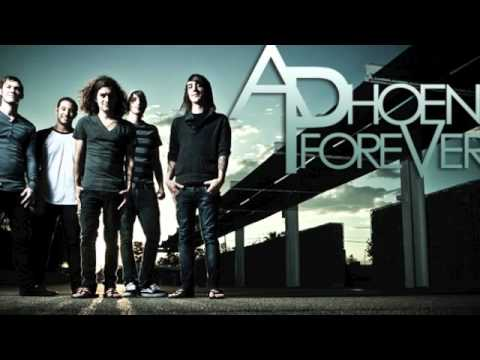 A Phoenix Forever- Sunshine (Official Song)