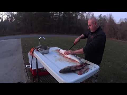 Review Of Bass Pro Shops Deluxe Fish Table