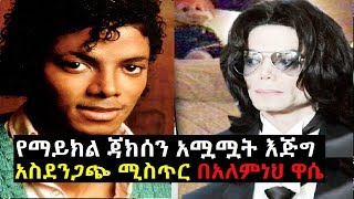 . The Secret Life Of Michael Jackson by Alemneh Wasse
