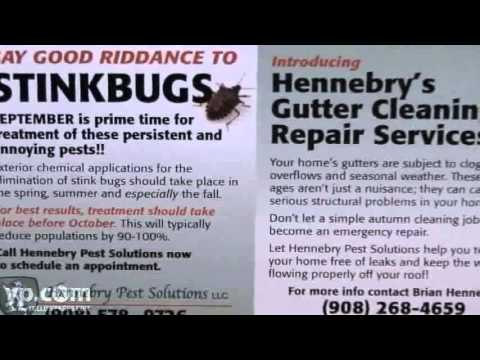 Chatham NJ Pest Control - Pest Control In Chatham New Jersey