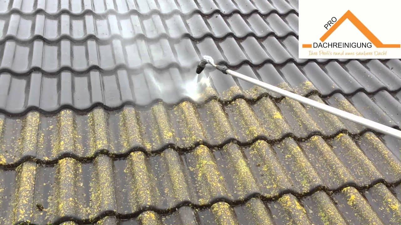 moos vom dach entfernen sicher entfernen so entfernen sie moos auf dachziegeln referenzen der. Black Bedroom Furniture Sets. Home Design Ideas