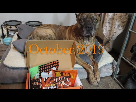 bullymake-box-unboxing-||-october-2019