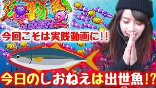 【海物語】今日のしおねえの一人遊びは出世魚!!目指すは社長♪【ぱちズキっ!】