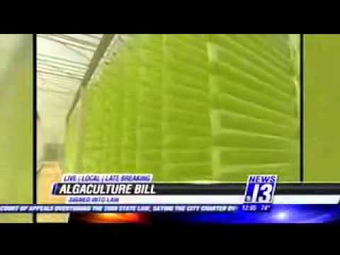 KOLD CBS President Obama Adds 'Algaculture' to Definition of Agriculture