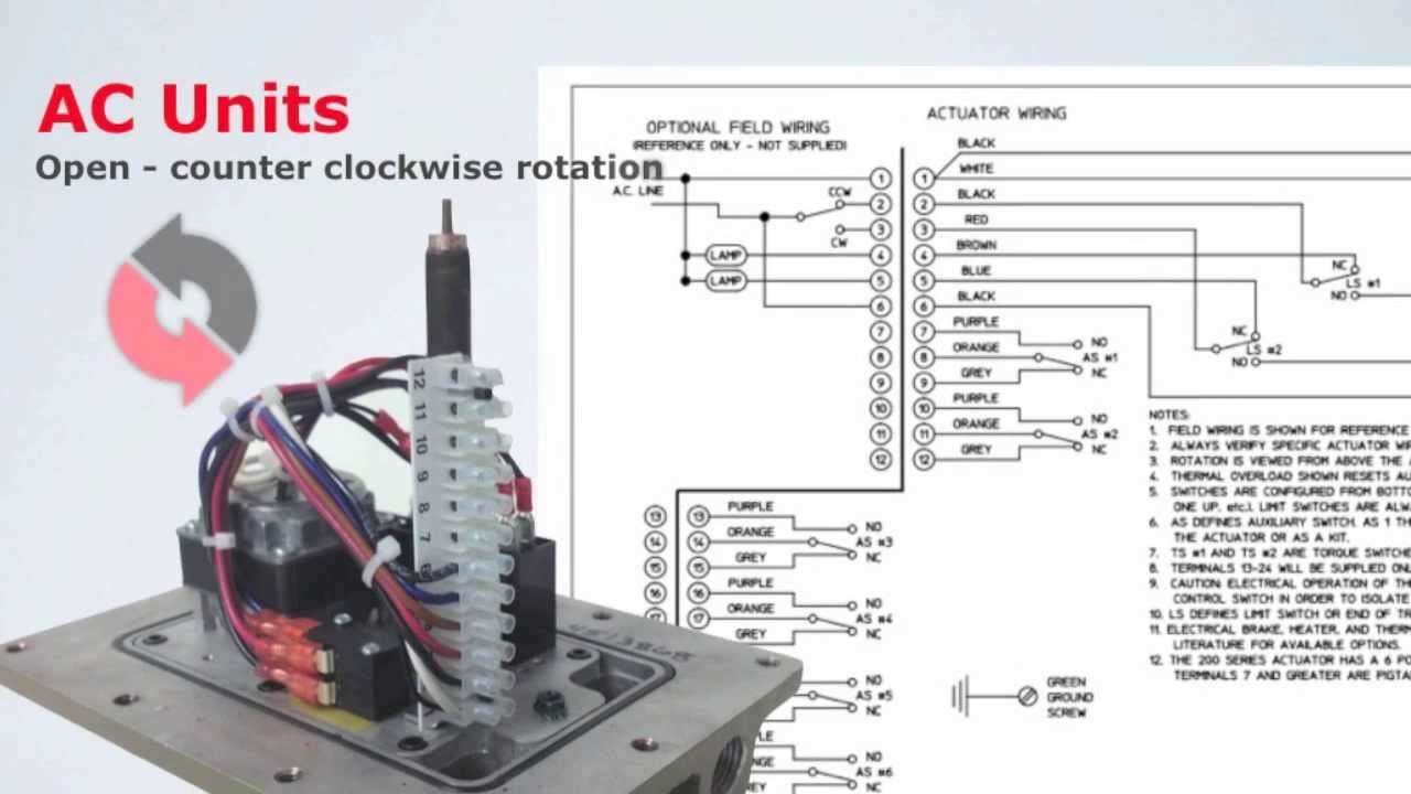 B Series Electric Actuator- Ac And Dc Wiring Instructions