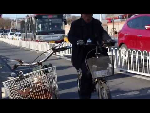 Beijing Video Diary | March 2015