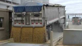 Hauling Soybeans to the Processor & Backhaul Lime