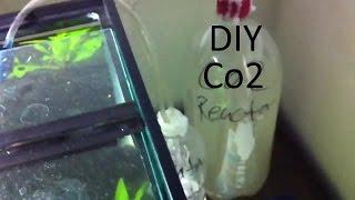 First Diy Co2 System For Plant Aquarium