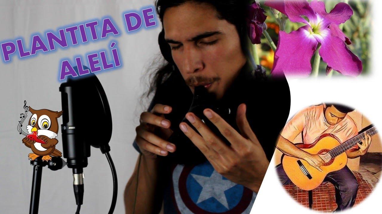 Plantita de Alelí  (Huayno) - Ocarina/Voice/Guitar