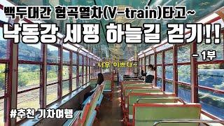 1부-백두대간 협곡열차(V-train)타고 낙동강 세평…
