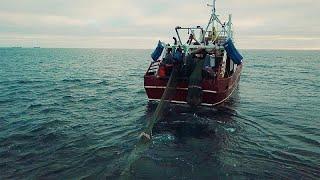 La pêche européenne récolte les fruits d'une gestion durable