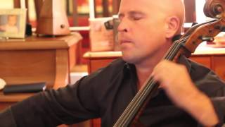 Chamber Music | OC: The Art of the Cello