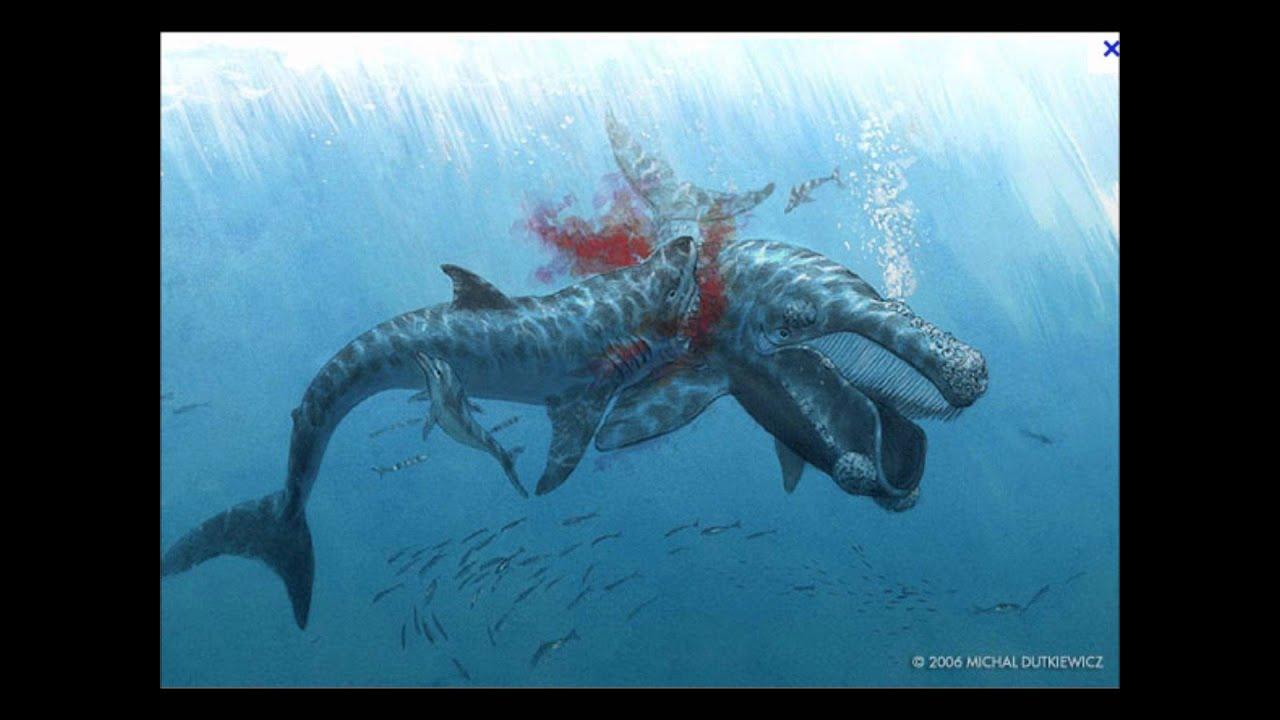 megalodon vs mosasaur - YouTube