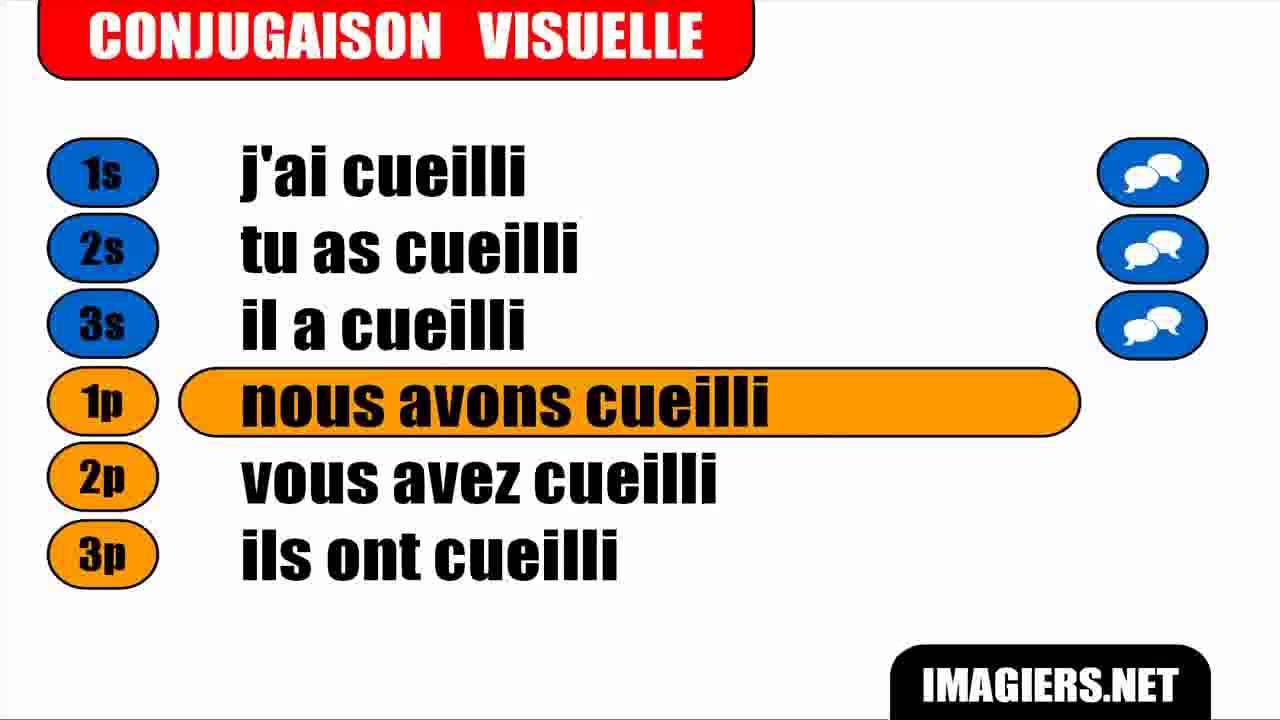 Conjugaison Indicatif Passe Compose Verbe Cueillir Youtube
