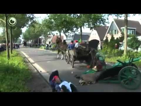 Horse Carriage Crash