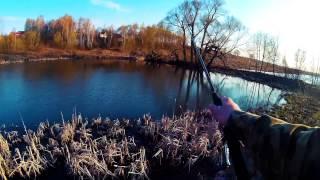 Рыбалка в Подмосковье ВИДЕО. Шатура. Шатурские озера. Озеро Святое