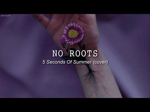 5 Seconds Of Summer // No Roots ; Lyrics