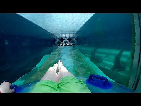 Atlantis Aquaventure - Serpent Slide (Ride Through Shark Tank!) Nassau, Bahamas