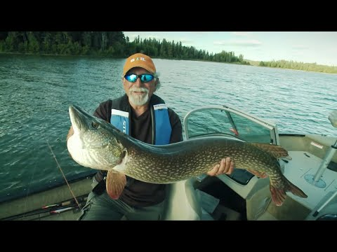 The Fish'n Canada Show | Episode 420 | Northern Alberta Northerns
