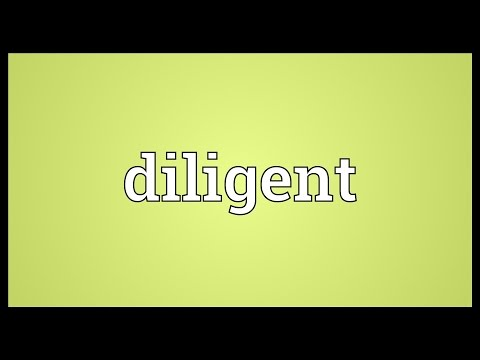 Diligent Meaning