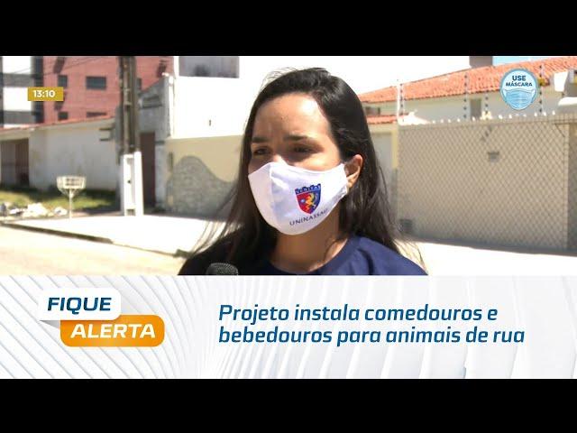 Projeto instala comedouros e bebedouros para animais de rua