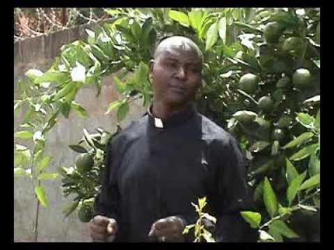Download Murengeti na iria imata By Rev. Joe Mwangi