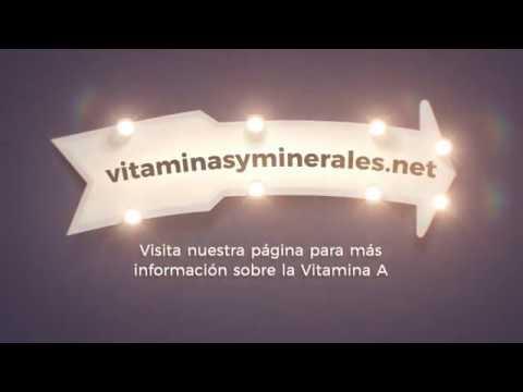 Toda la información sobre la Vitamina A, Alimentos