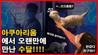 EP.5 아쿠아리움에서 수달 상봉하고 온 썰!!! 코엑…
