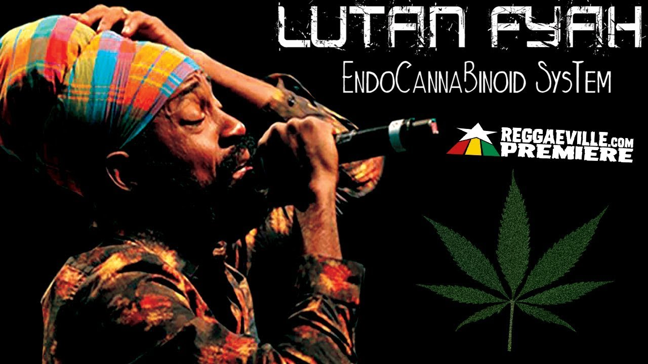 Lutan Fyah - EndoCannaBinoid System [Official Audio 2017]