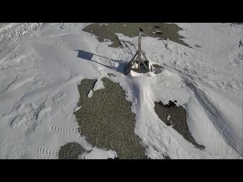 Polar Bears Cape South - Wapusk National Park Cam 04-19-2018 07:00:36 - 08:00:37