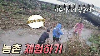 [김여포]미꾸라지는 잡아라~농촌 체험하기(feat.장군…