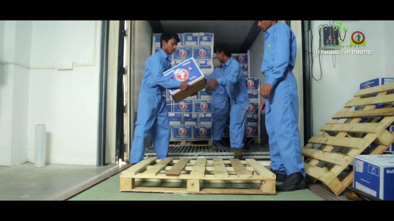Tropicana Cold Storage Plant Kochi & Tropicana Cold Storage Plant Kochi - YouTube