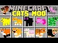 Minecraft CATS MOD / SPAWN, TAME, AND BREED 100+ NEW CATS! / Modded Mini-Game