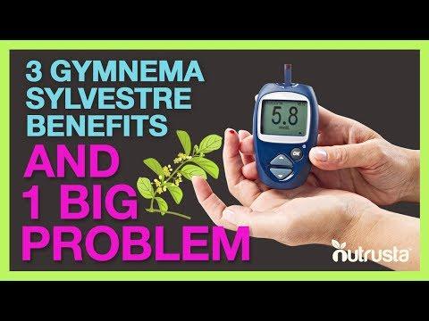 Gymnema Sylvestre For Diabetes Type